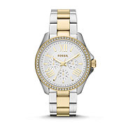 AM4543 - Cecile Multifunction Stainless Steel Watch – Two-Tone